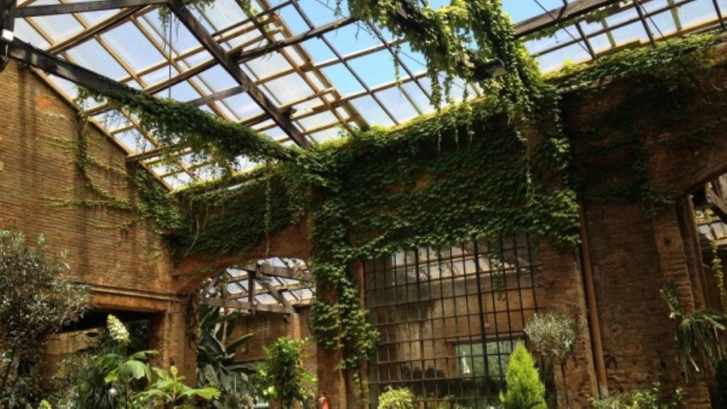 Jardineria en barcelona finest empresa de jardineria for Jardineria barcelona centro