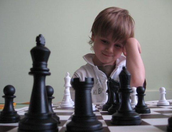 шахматы до8мб пам