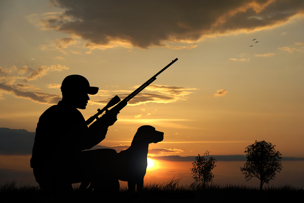 Лесная братва в шоке: сезон охоты на пушнину открыт