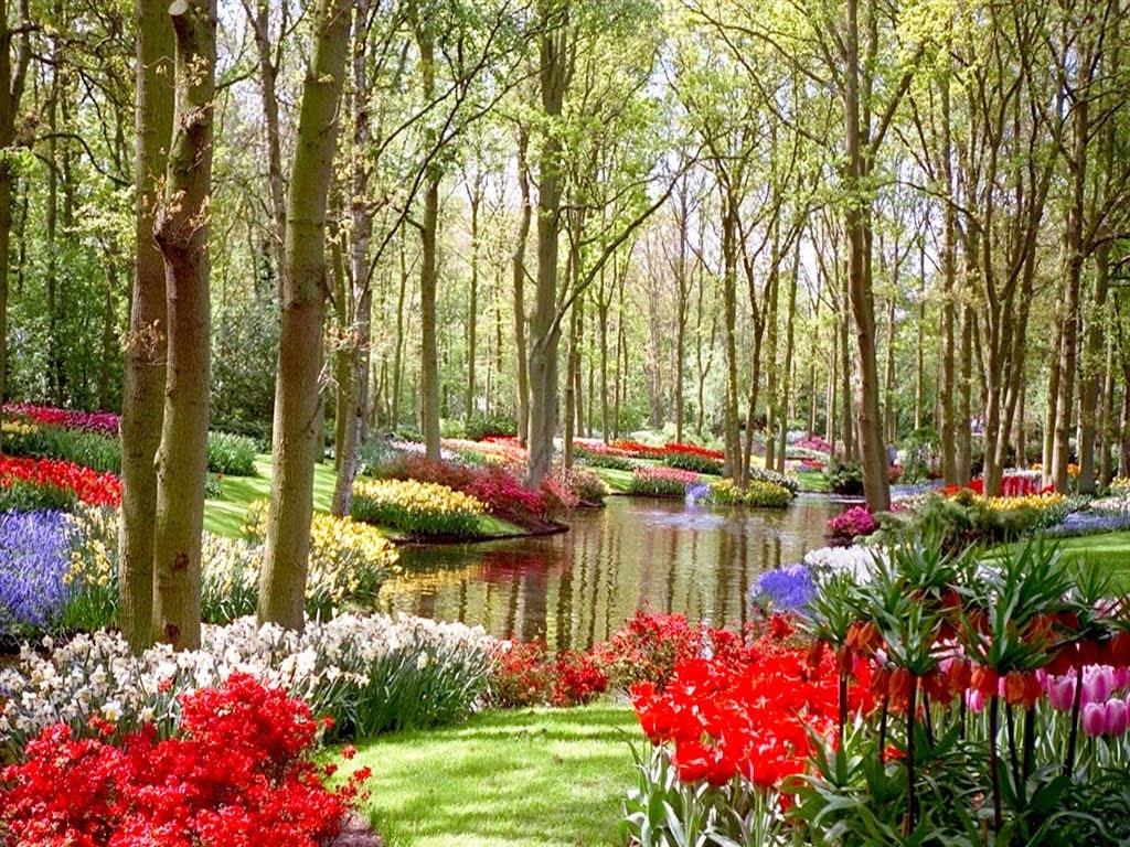 Jardin bot nico en val ncia parque municipal en espa a for Jardin botanico en sevilla