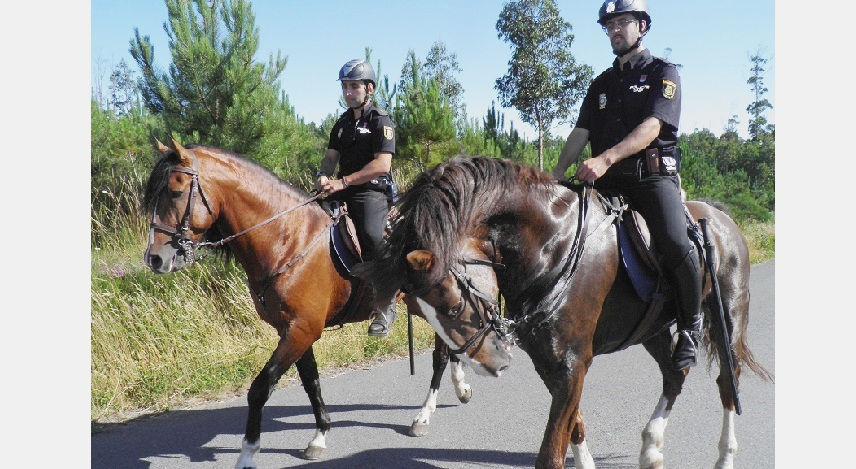 Впервые главный религиозный праздник Эльче будет контролироваться конными патрулями и авиацией