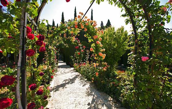 Альгамбра дворец сады фото Испания по русски все о жизни в  Сады Альгамбры