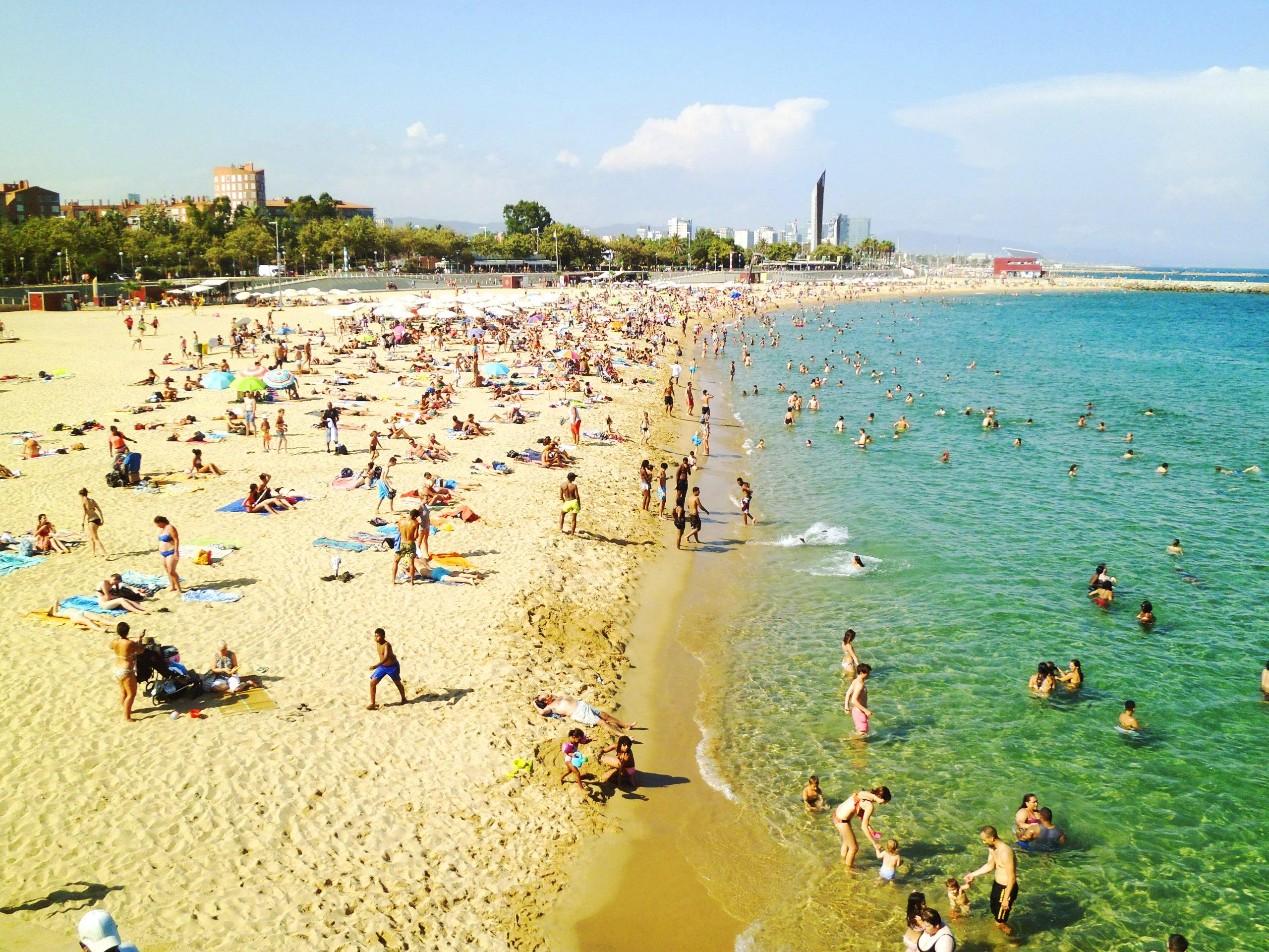 Новая дофиновка пляжи фото