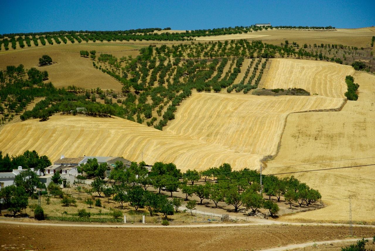Земля в испании недвижимость в стокгольме