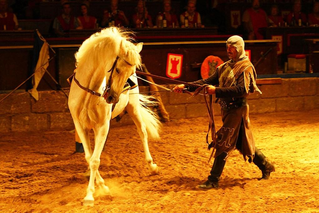 Рыцарский турнир - потрясающее шоу вблизи Барселоны