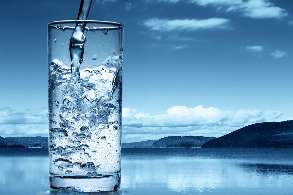 Ионизатор воды содержит в своём составе пластины, помогающие наладить работу органов