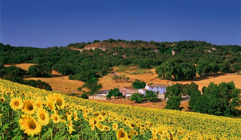 Внутренний туризм в испании в прошлом