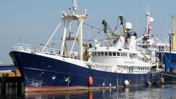 налог на рыбную ловлю